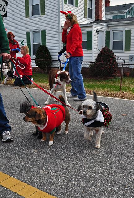 Smithfield Christmas Parade (11)