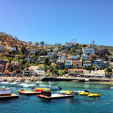 458 best images about Catalina Island Paradise on