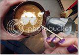 photo Catcafe-7_zps427a0145.jpg