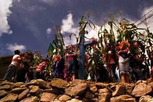Fiesta del maíz en Chietepec el Grande, Montaña de Guerrero, México. (Foto: Prometeo Lucero/CDHM Tlachinollan)