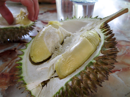 durian_session-8-2