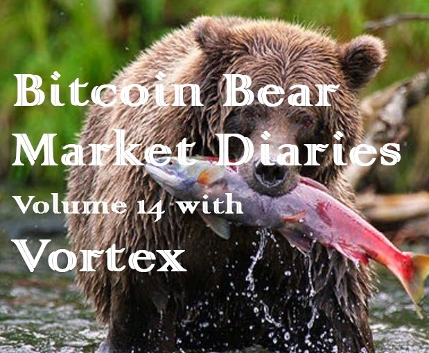 Bear Market Diaries for bitcoin
