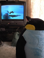 Penguin watches Nigel Marven