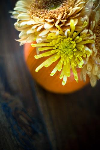 Miss Janessa's flowers