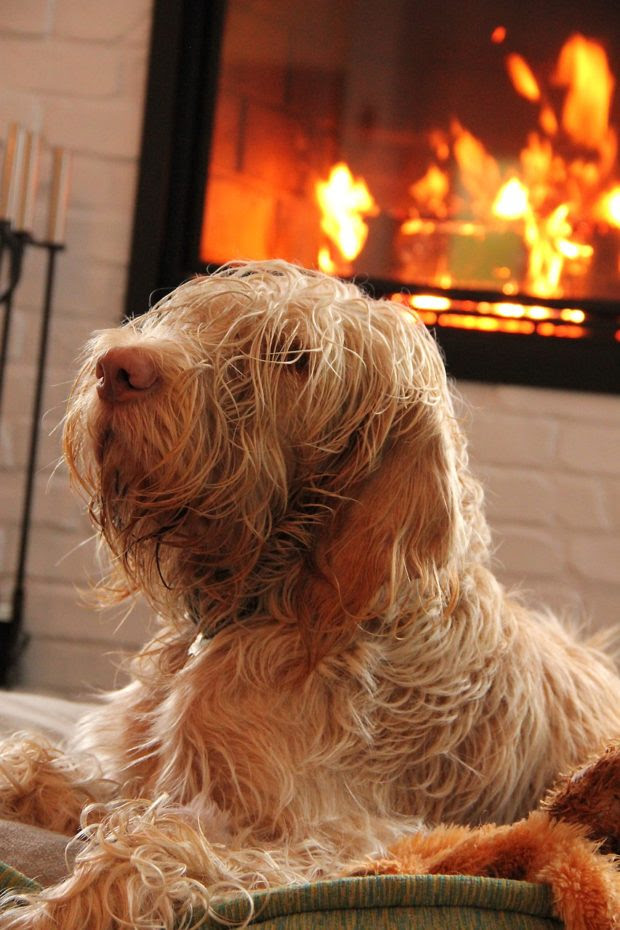 Essential Tips to Upgrade Your Heating While Complimenting Your Indoor Style