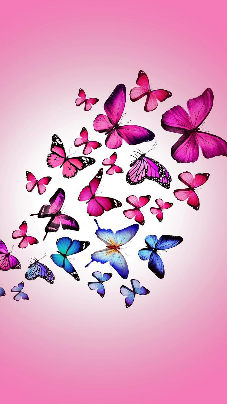 Pink Butterflies iPhone Wallpaper HD
