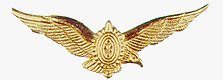 Brevê do Piloto da Aviação do Exército Brasileiro