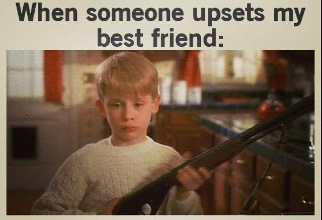 Dont Hurt My Best Friend Funny Pictures Quotes Memes Funny