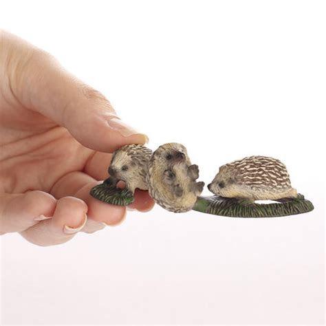 Miniature Hedgehog Pups   What's New   Dollhouse