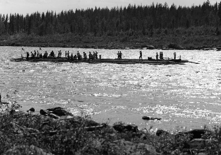 Tornio river's last raft