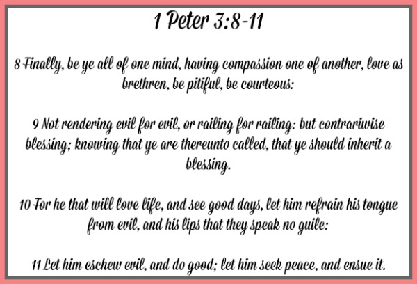 Image result for Peter 3 8 - 11