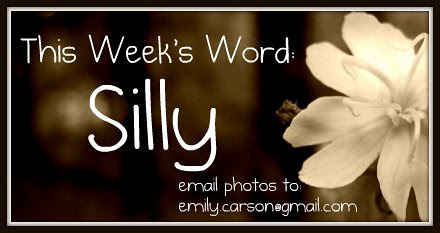 This Week's Word, Silly