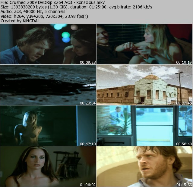 Crushed 2009 DVDRip x264 AC3 - konscious