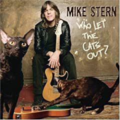 Mike Stern cover