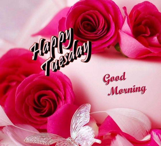 Happy Tuesday Good Morning With Flowers Pictures Photos And Images
