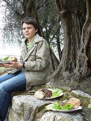 au pied de l'olivier.jpg