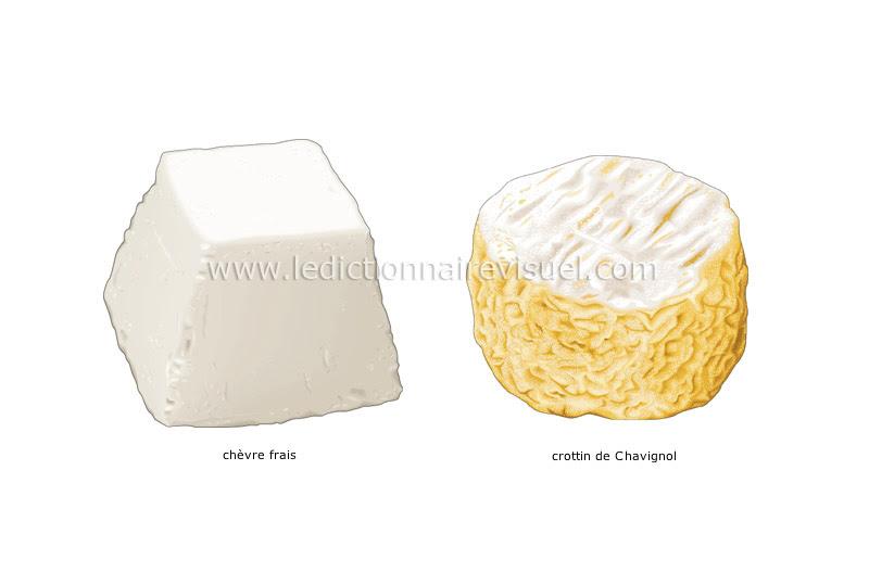 fromages de chèvre - Le Dictionnaire Visuel