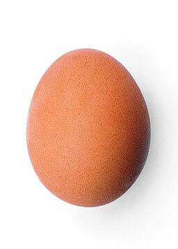 Chicken egg 2009-06-04