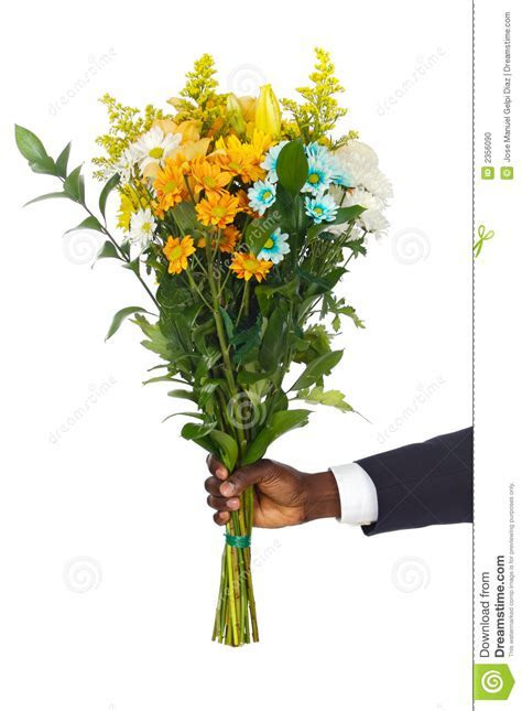 Hand Giving Flowers Stock Photo   Image: 2356090