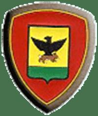 Lo stemma della Divisione Acqui