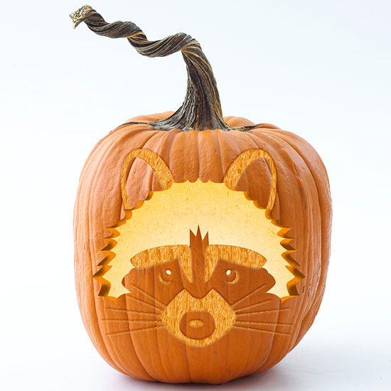 Raccoon Pumpkin Stencil
