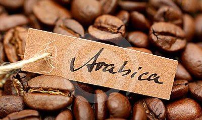 hạt cà phê arabica
