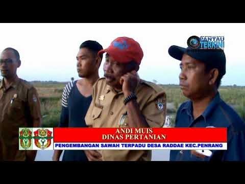 Video Program sawah terpadu di Kabupaten Wajo