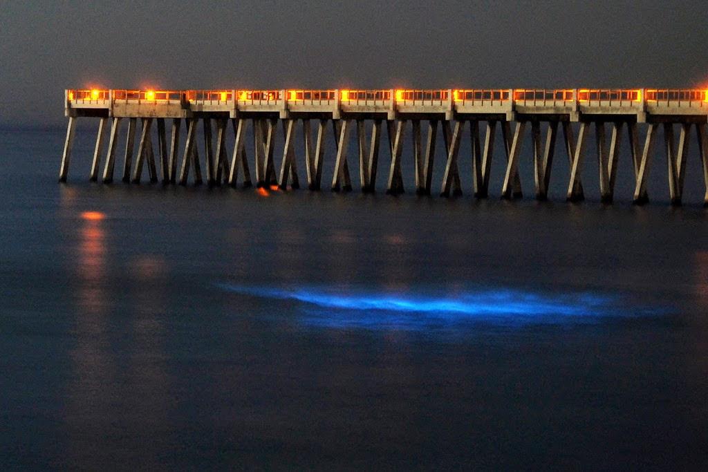 yaitu  sinar yang menerangi dan silau yang mengaburkan Top 6 Lautan yang Bersinar