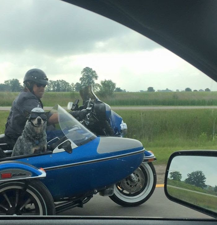 Saw This Fella On The Highway. The Sticker On His Helmet Says