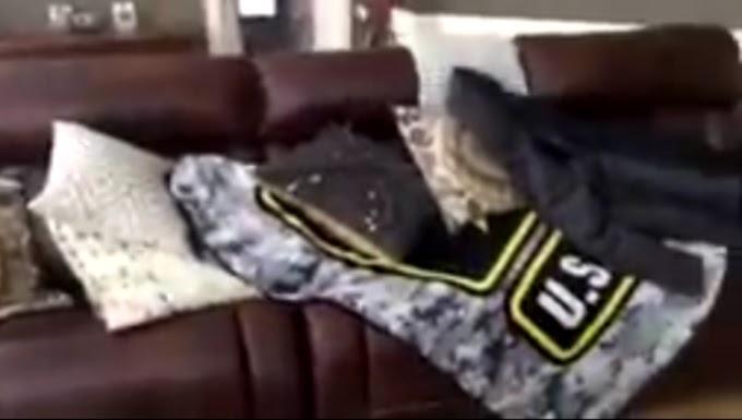 Tras 7 meses de difícil separación un piloto sorprende a su perro con el más emotivo reencuentro