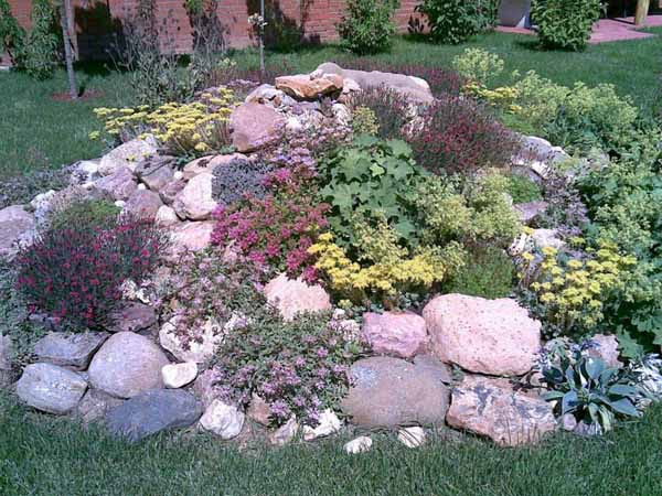 Some Considerations for your Small Rock Garden | Ideas 4 Homes