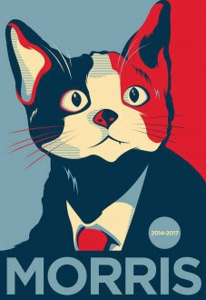 Lanzan a un gato como candidato a la alcaldía de Xalapa. Foto: Tomada de Facebook