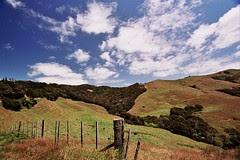 Upper Coromandel Peninsula