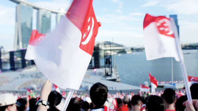 NDP 2012 FLAGS