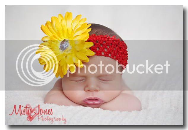Westchase newborn pictures,westchase newborn portraiture,riverview newborn portraits,riverview newborn photographer