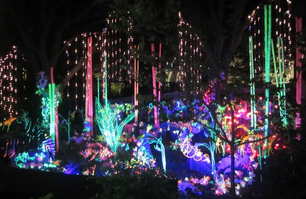 christmas lights zoo houston christmas ideas - Christmas In Houston 2015