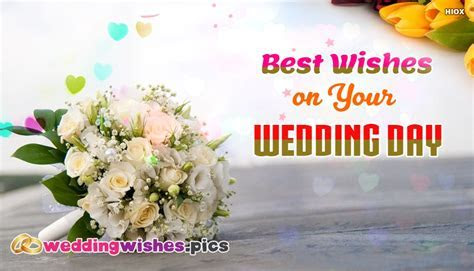 Best Happy Wedding Quotes To Wish Couples on Marriage