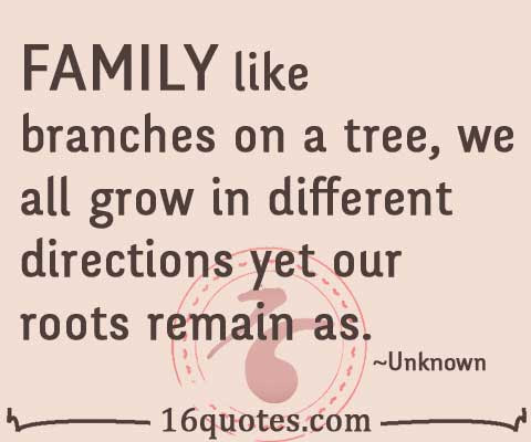 Family Like Branches On A Tree We All Grow In Different Directions Yet