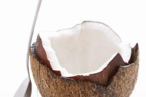 How to Freeze Fresh Raw Coconut   Our Everyday Life