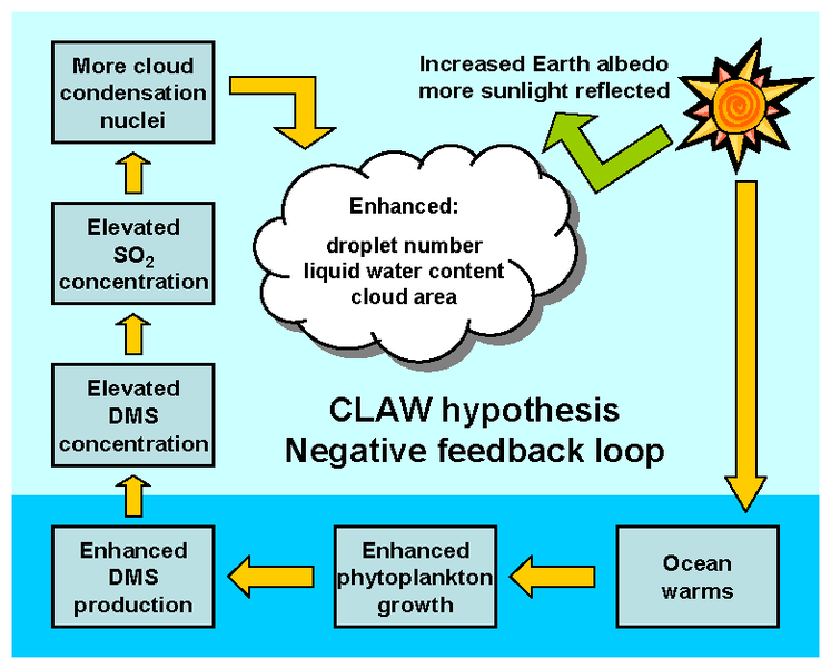 File:CLAW hypothesis graphic 1 AYool.png