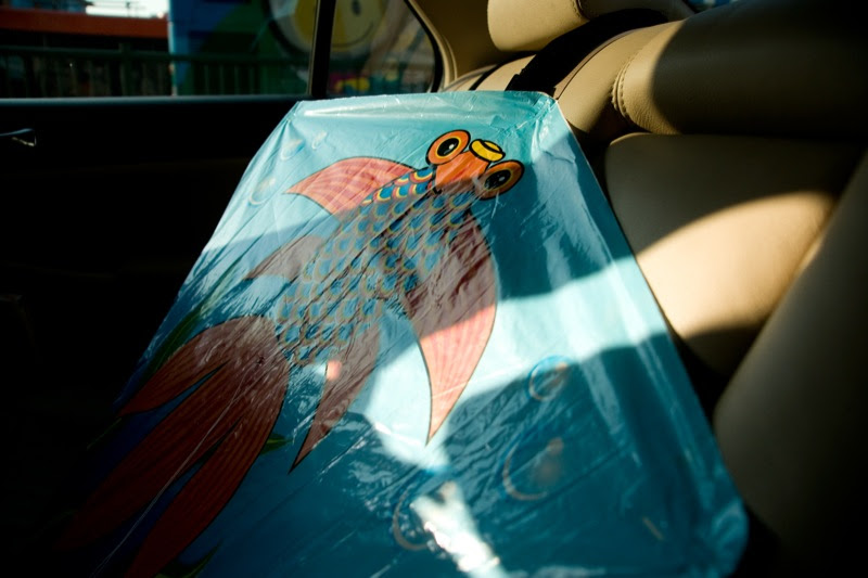 yw-go fly kite-marina barrage-090824-0002.jpg