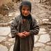 Little Girl in Farin