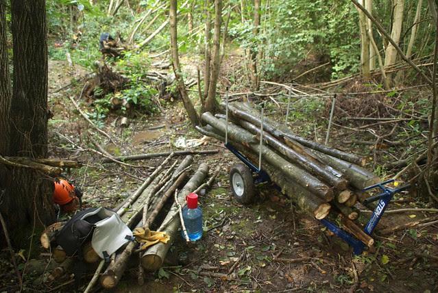 DSC_4538 Logs on the log trolley