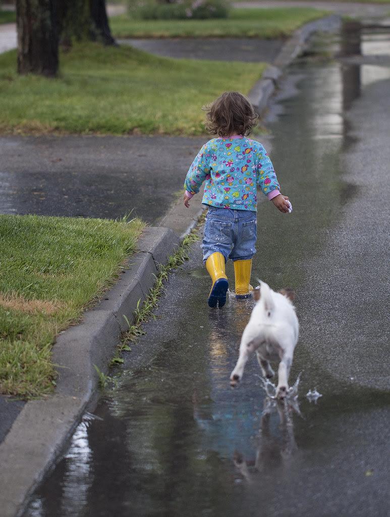 puddle pals4
