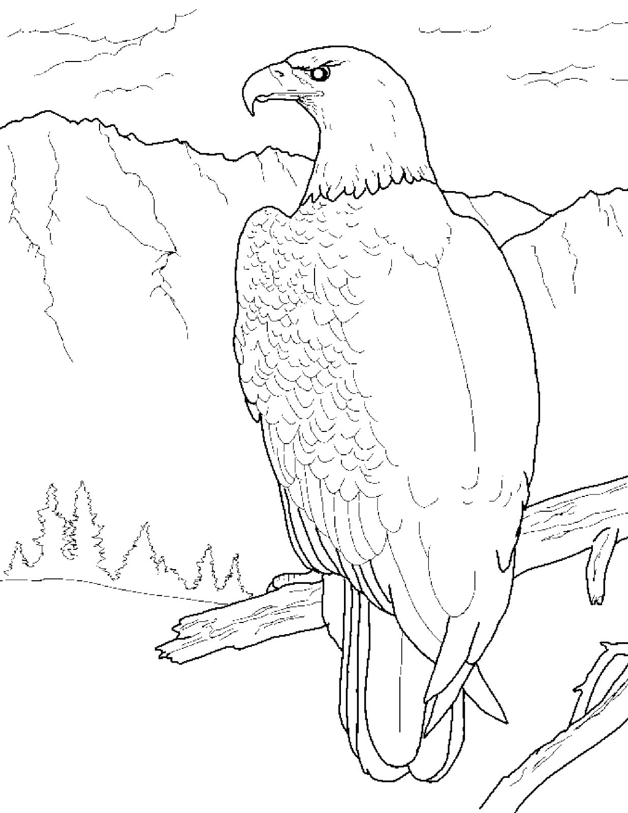 - Printable Bald Eagle Coloring Pages For Kids Cool2bKids - Coloring