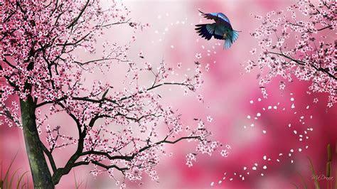 Sakura Wallpaper 6 [1920x1080]