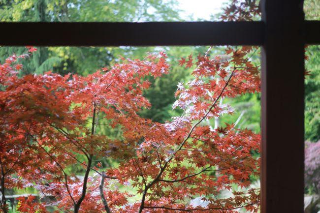 photo ile-versailles-nantes-japon_zps13f5342a.jpg
