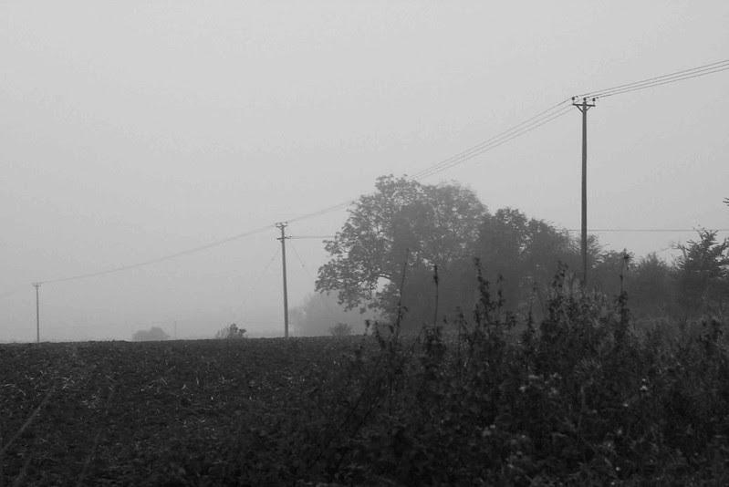 Mist and Murk