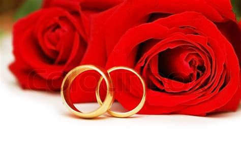 Two wedding rings and red roses isolated on white   Stock