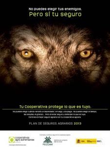 El Ministerio De Medio Ambiente Fomenta El Odio Al Lobo En El Mundo